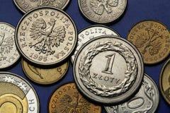 Pièces de monnaie de la Pologne Photo stock