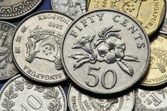 Pièces de monnaie de Singapour Photographie stock libre de droits