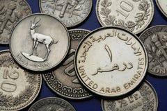 Pièces de monnaie des Emirats Arabes Unis Photos stock