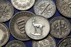 Pièces de monnaie des Emirats Arabes Unis Photo libre de droits