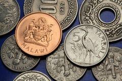 Pièces de monnaie du Malawi Images libres de droits