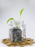 Pièces de monnaie et bourgeon vert s'élevant en verre Photographie stock