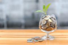Pièces de monnaie et graine dans la bouteille claire photo stock