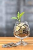 Pièces de monnaie et graine dans la bouteille claire images stock