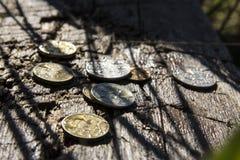 Pièces de monnaie humides Photo stock