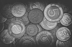 Pièces de monnaie polonaises en noir et blanc Photo libre de droits