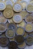 Pièces de monnaie sud-américaines Image stock