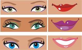 Pièces de visage de Ladys Image stock