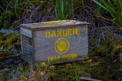 Piège animal en acier non mortel ou humanitaire employé pour attraper de petits mammifères pour l'étiquetage ou la relocalisation photographie stock