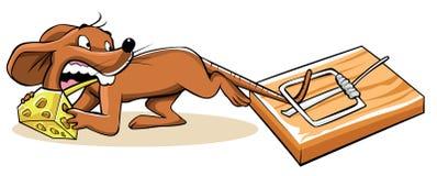 Piège de souris Image libre de droits