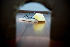 Piège de souris Images stock