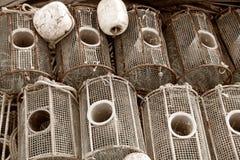 Pièges de poissons Image libre de droits