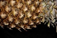 Piña Foto de archivo