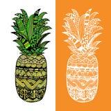 Piña dibujada mano del vector Imagen de archivo libre de regalías