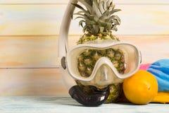 Piña divertida en una máscara de la natación Fotos de archivo libres de regalías