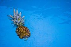 Piña flotante Fotos de archivo