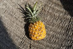 Piña fresca africana fotografía de archivo libre de regalías