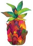 Piña pintada a mano de la acuarela Foto de archivo libre de regalías