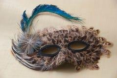 Piórkowa maska Fotografia Royalty Free