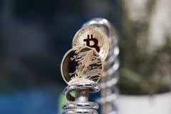 Piórkowa moneta & Bitcoin moneta Fotografia Royalty Free