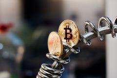 Piórkowa moneta i bitcoin moneta Zdjęcia Stock