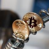 Piórkowa moneta i bitcoin moneta Obraz Stock