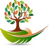 Piórkowy drzewny logo ilustracji