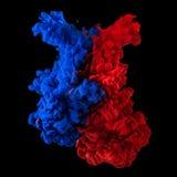 Pióropusze czerwony i błękitny atrament w wodzie zdjęcie royalty free