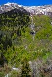 Più alta cascata vicino al lago Ritsa Fotografie Stock