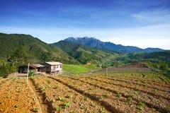 Più alta montagna della Malesia, supporto Kinabalu Fotografie Stock