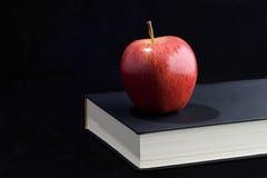 Più alto apprendimento Fotografia Stock Libera da Diritti