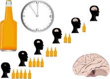 Più birra più cervello che si restringe Immagini Stock