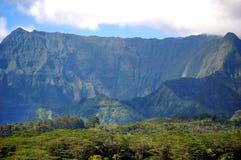 Più grande della vita Kauai fotografia stock