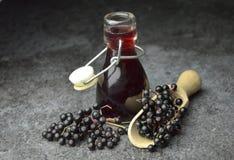 Più vecchio eco di frutta fresca del succo della bacca bio- fotografie stock