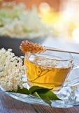 Più vecchio tè del fiore fotografia stock libera da diritti