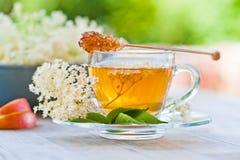 Più vecchio tè del fiore Fotografie Stock