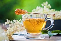 Più vecchio tè del fiore fotografia stock