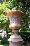 Più vecchio vaso di fiore arabo Immagine Stock Libera da Diritti