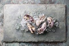 Pięć świeżych surowych ostryg z lodem Obraz Royalty Free