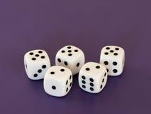 Pięć biel dices lying on the beach na stole Zdjęcie Stock