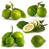 pięć cytryna zielony obrazek obrazy royalty free