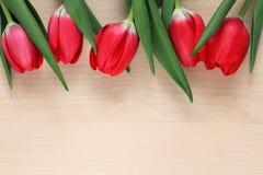 Pięć czerwonych tulipanów Zdjęcie Stock