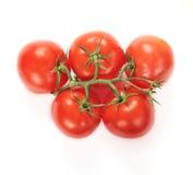 Pięć dojrzałych czerwonych pomidorów Obraz Stock
