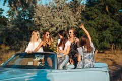 Pięć dziewczyn zabawę w wsi Fotografia Royalty Free