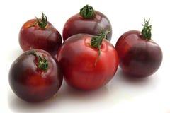 Pięć indygowych pomidorów zdjęcia royalty free