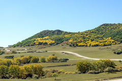 pięć kolorów jesieni halna sceneria Zdjęcie Stock