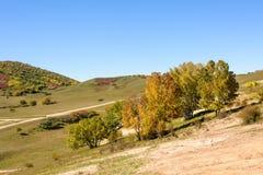 pięć kolorów jesieni halna sceneria Zdjęcia Royalty Free