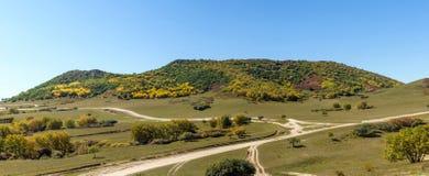 pięć kolorów jesieni halna sceneria Obrazy Royalty Free
