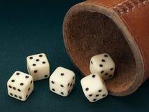 Pięć kostka do gry i rzemiennej filiżanka Zdjęcia Stock