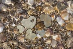 Pięć metali serc pod czochrami woda Zdjęcie Royalty Free
